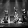 gala-2013-61.png